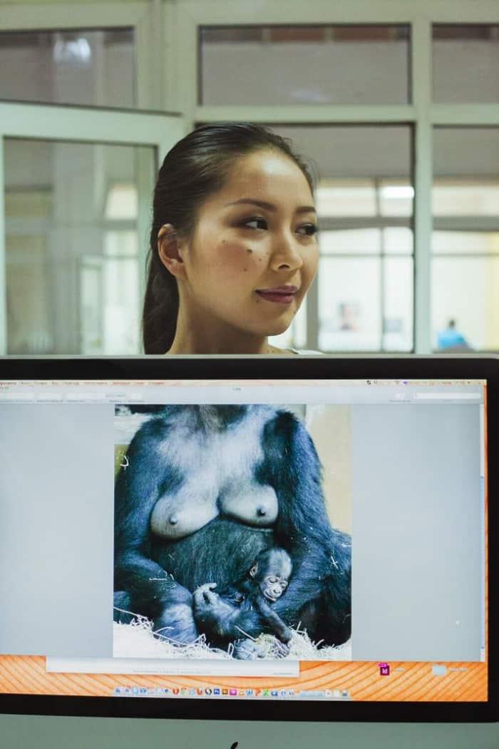 gorilla vrouw kantoor